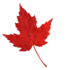 maple-leaf_643292_68194965